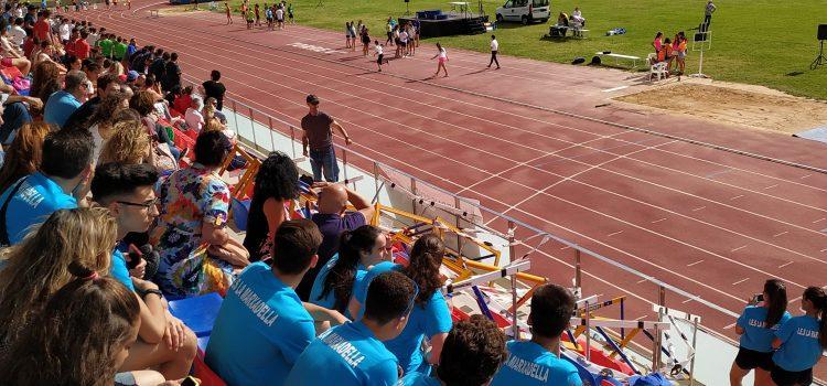 Éxito en las miniolimpiadas